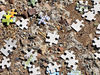 puzzling2: pieces of jigsaw puzzle scattered on roadside ground