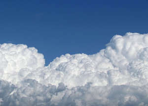 cauliflower clouds: white cumulonimbus clouds against a blue sky