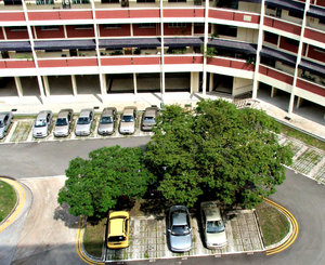 courtyard parking: basic highrise accommodation courtyard parking for tennants