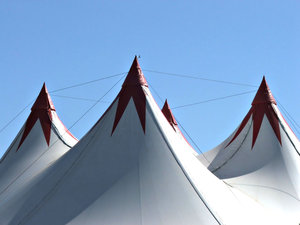 it's the circus!: the circus bigtop us up and ready for entertainment and fun