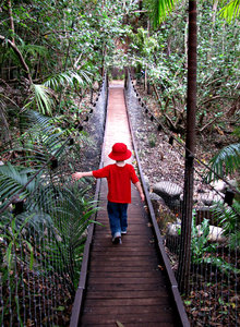 red and blue suspension: young boy dressed in red and blue walking along a suspension bridge.