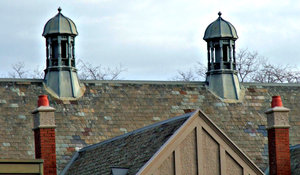 rooftops and chimneys: historic buildings, roofs with old style chimneys