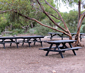 picnic area: picnic tables and seats in the open