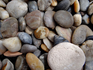 river rocks2: smooth river rocks in garden display
