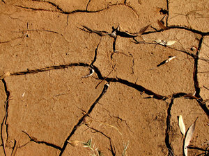 dry and cracked4: dried out waterholes and river's edge
