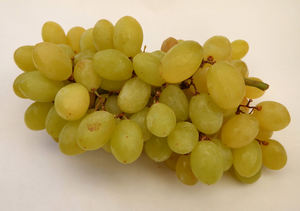 seedless grapes2: bunch of seedless green grapes