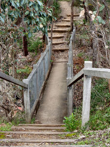 rugged bush steps2: rough bushland steps