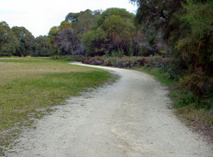 public park path6: very long path/track on public park reserve