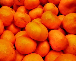 taste of mandarin2: tasty & juicy fresh mandarins