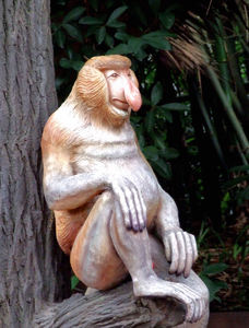 out of their enclosure17: replica zoo creatures for display and tactile experience - proboscis monkey