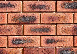 wall textures & colors50: colours, textures and variations in modern brick wall