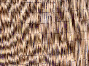 bamboo fence: bamboo screen fencing