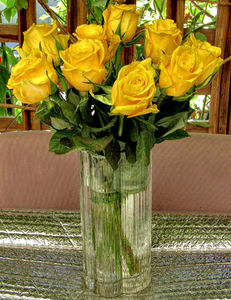 vase of gold1: bunch of dark yellow roses in vase