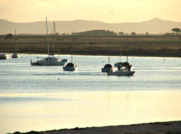 morning bay views: several views of a bay in the very early sunlight