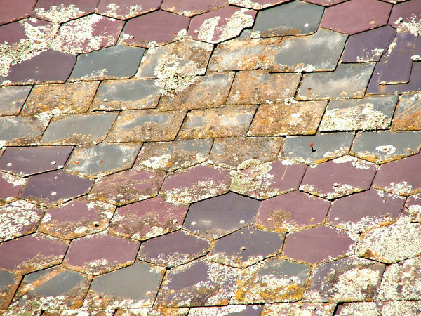 roof textures: variety of coloured overlapping roof tiles with lichen and loose nails