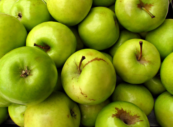 little green apples: small green apples suitable for eating raw and cooking