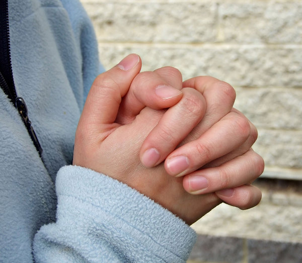 hands4: woman's folded hands - as in prayer