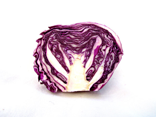 red cabbage: cut - halved, raw red cabbege head