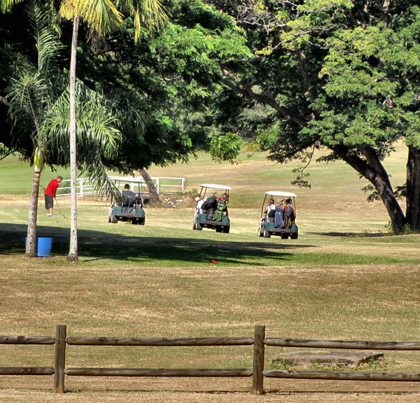golf course movement1b: golfers on the move on public park golf course