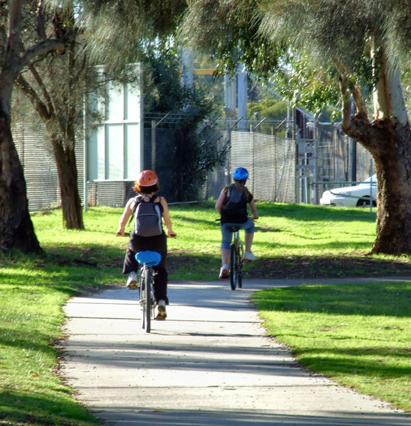 cycle path4: cyclists riding on shaded cycle path