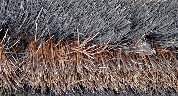 broom bristles1: the underside of an old used hard-bristled yard broom