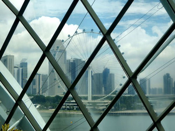 curved ceiling windows7: Singapore's Gardens by the Bay columnless conservatory domes