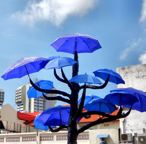 umbrella trees garden3: colourful umbrella display on vacant land in Little India, Singapore