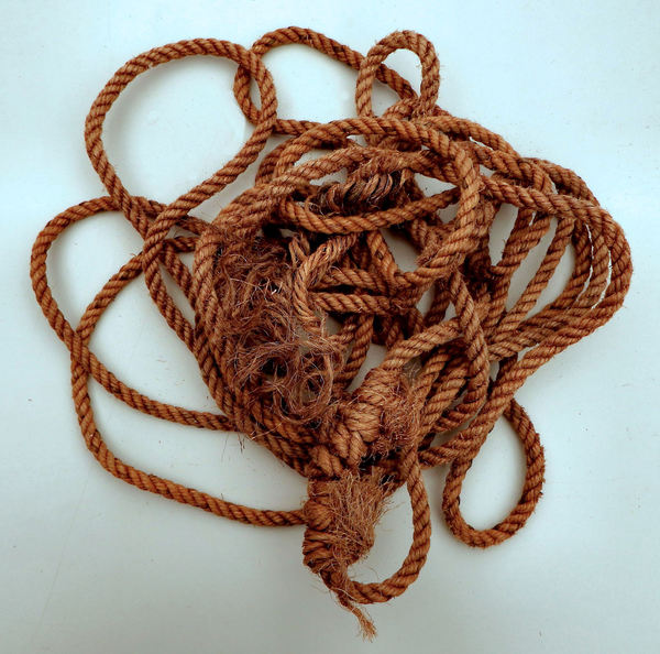 coiled rope3: roughly coiled or bunched rope showing rope ends