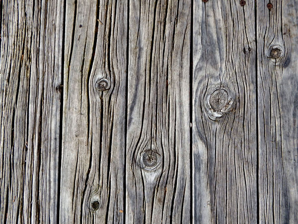weathered timber decking3: timber decking textures on lakeside over water viewing platform