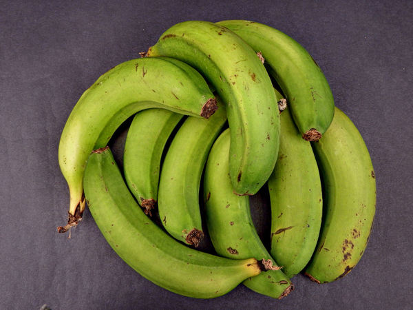 green bananas1: selection of loose green bananas