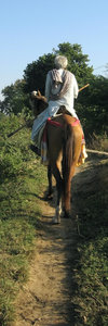 Man on horseback: An aged farmer in rural India going to the day's work on horseback.