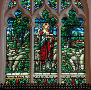 The Good Shepherd: Stained Glass at an Anglican Church downtown Halifax, Nova Scotia
