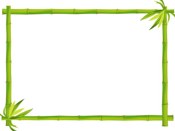 Bamboo Border 4: A bamboo border with lots of copy space.