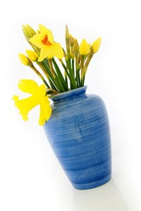 Daffodil Vase: A blue ceramic vase withfreshly cut daffodils