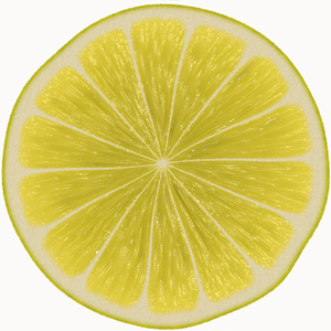 Lemon Slice: A round slice of lemon against a white background. High resolution.