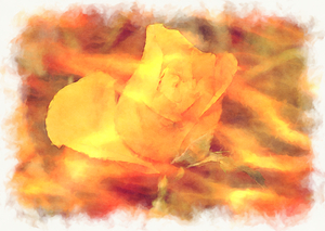 Grunge Rose 4: A yellow rose edited in a grungy style. You may prefer:  http://www.rgbstock.com/photo/mlwZcOw/Grunge+Rose  or:  http://www.rgbstock.com/photo/mpdg7oE/Grunge+Rose