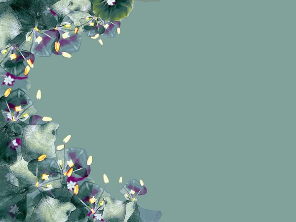 Floral Border: A border of flowers. Lots of copyspace. Photo and graphic.