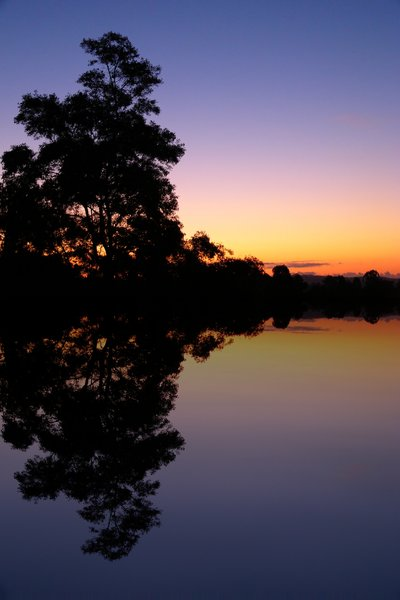 Water Scene with Sunset: Photographic and nature scene. Sunset behind treetops. Colours are untouched.