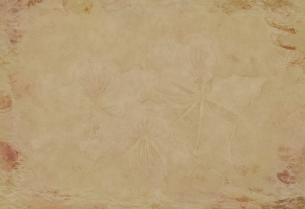 Decorated Parchment 4: A  background of parchment decorated with a floral background and border.