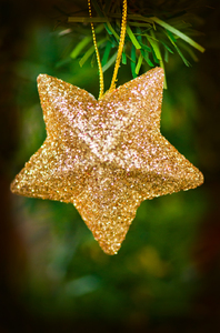Christmas star: Golden Christmas star