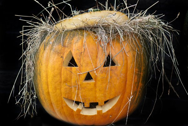 Pumpkin head: carved pumpkin