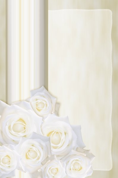 Wedding background: White roses on champagne color background